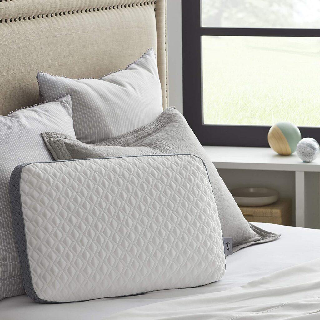 Sealy Molded Memory Foam Pillow